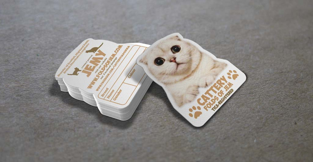 Cat Business Card templates