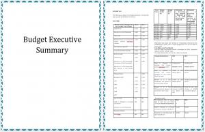 Sales Executive Summary Sample