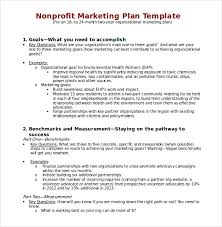Non-Profit Marketing Plan Template