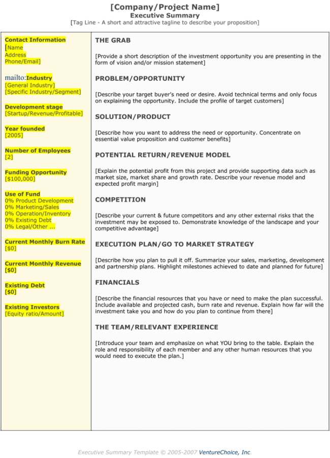Project Executive Summary Templates
