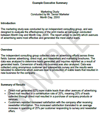 University Executive Summary Template