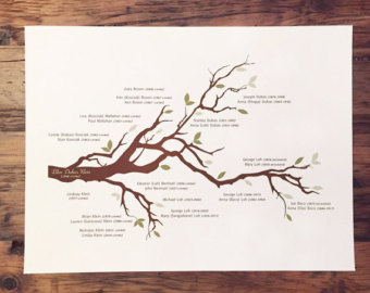 family tree print with branch