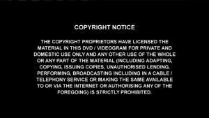 copyright notice sample