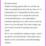 Apology Business Letter Sample